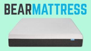 bear mattress review bed coupon deal
