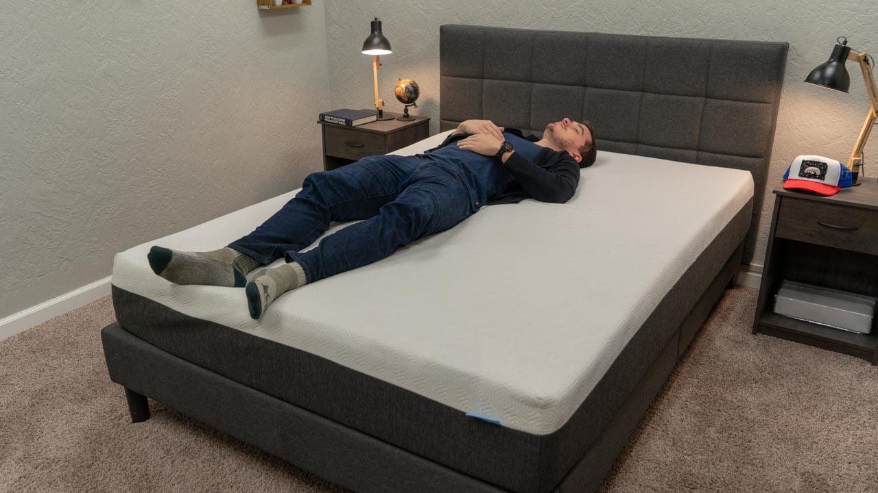 bear mattress review back sleepers
