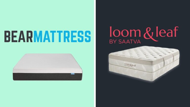 Bear vs Loom and Leaf Mattress