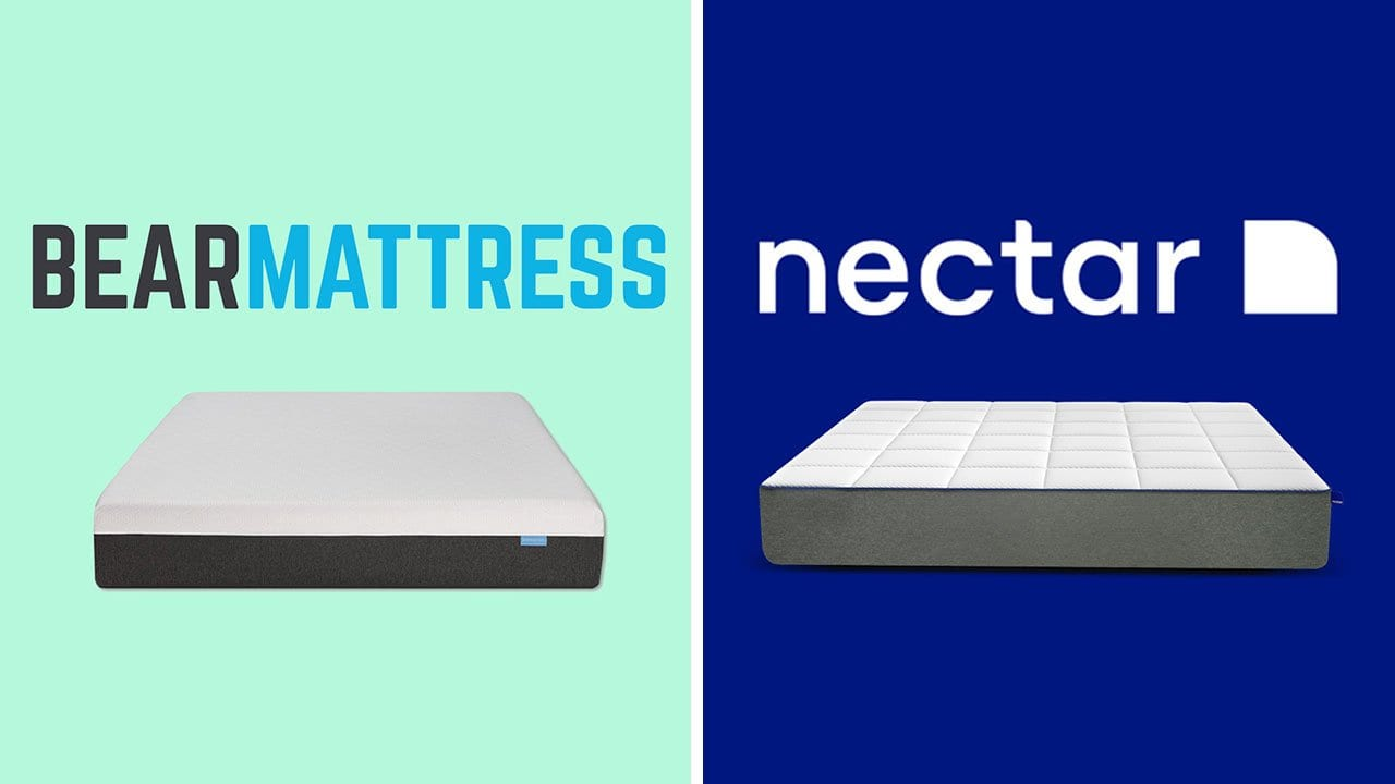 bear vs nectar mattress review