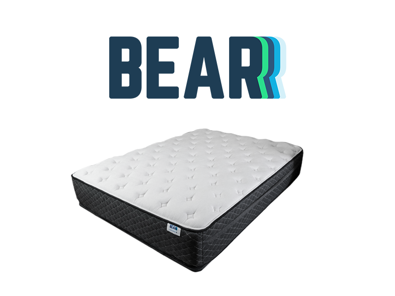 Bear Hybrid
