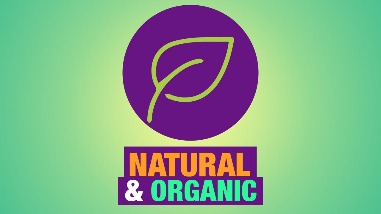 best natural and organic mattress review