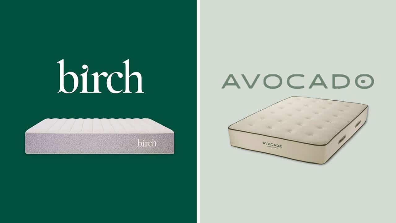 Birch vs Avocado Mattress