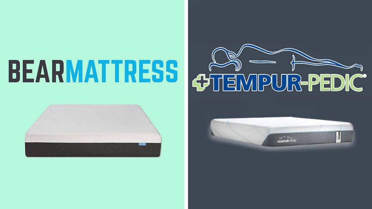 Bear Mattress vs TempurPedic