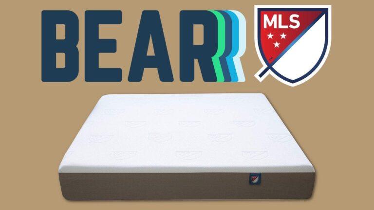 Bear MLS Foam Bed