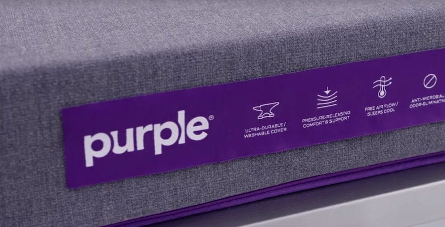 purple dog pet bed review